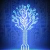 Numérique, noms de domaine / Jurisprudence sur l'Internet / logiciels